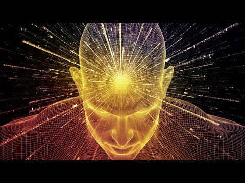 What is Consciousness ?