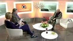 Remu Aaltonen haastattelu 2011
