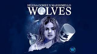 Selena Gomez & Marshmello - Wolves (2017 AMA's Performance [Audio])