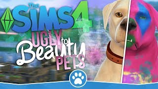 The Sims 4 PL | 10 minutes + Ugly to Beauty Pets Challenge