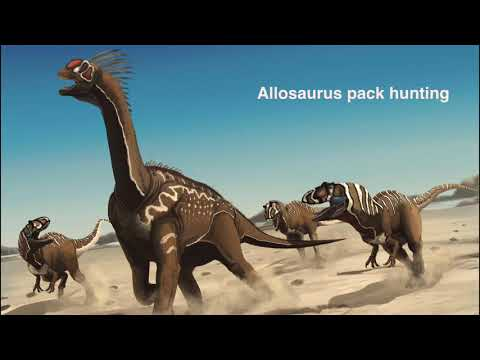 Chasing History: Life before Us, Pt 2 - Dinosaurs To Now