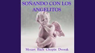 Serenade For Strings in E Major Op.22: IV. Larghetto
