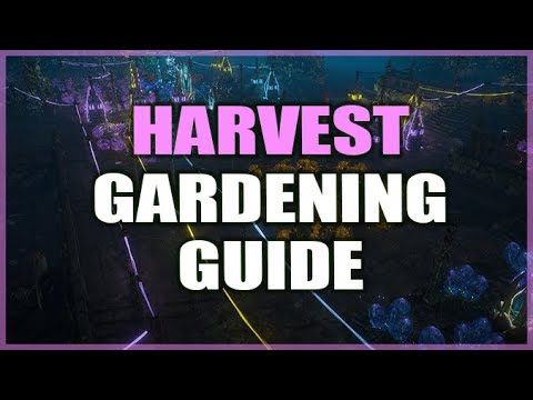PATH of EXILE HARVEST Gardening Guide for Confused Exiles