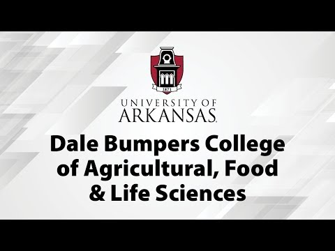 Dale Bumpers College of Agricultural, Food & Life Sciences Commencement