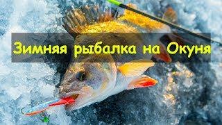 Зимняя рыбалка на Окуня в Огнёвское оз Большой Куяш