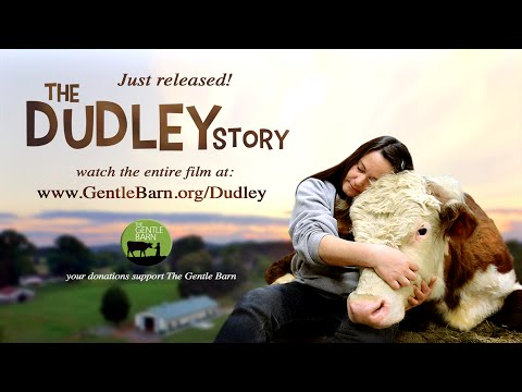 The Dudley Story