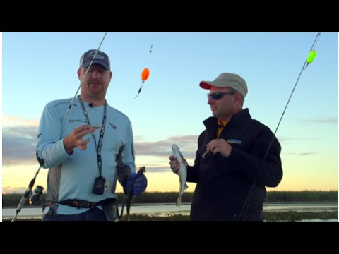 How to catch specs in the fall - Travis Miller