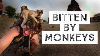 ATTACKED & BITTEN BY A RABID MONKEY!!!  Thailand Travel Vlog