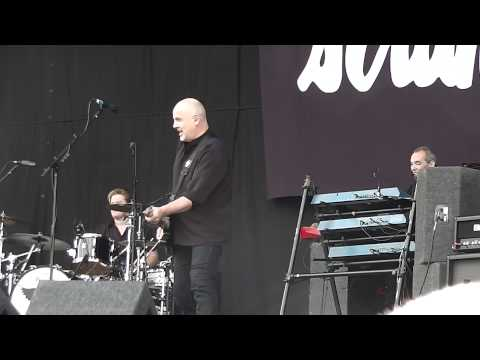 V Festival 2014 The Stranglers - All Day And All Of The Night
