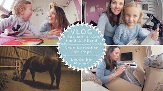 XXL-VLOG |Working-Mum-Alltag | Neue Körbchen für Pepe |Kathis Daily Life
