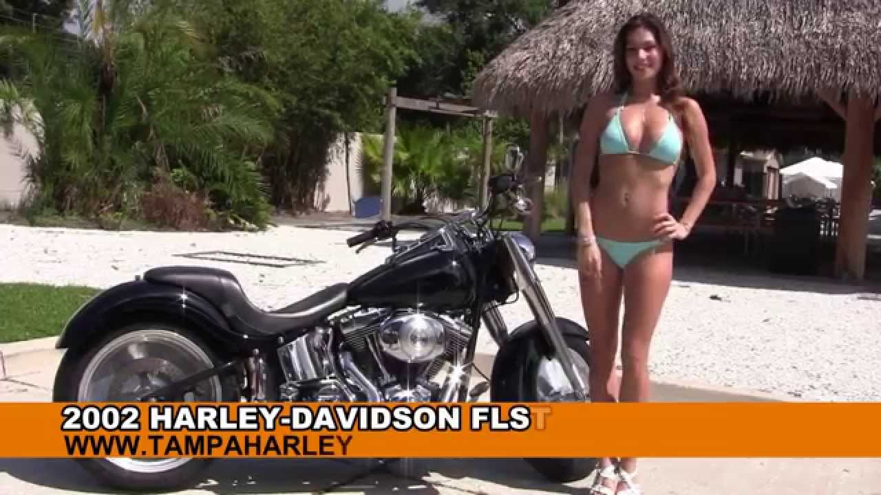 Harley Davidson Fatboy For Sale Craigslist