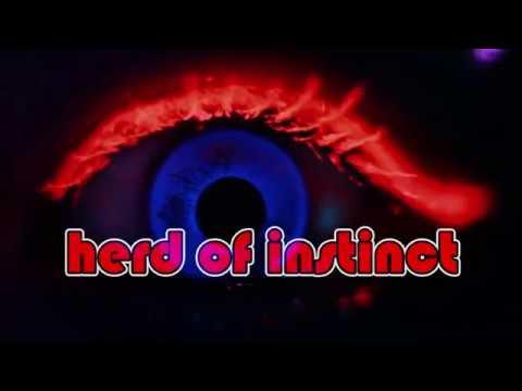 Herd of Instinct Grackle Art Gallery Dec16, 2017 Trailer