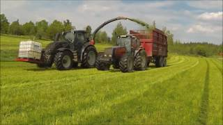 grass harvest in sweden