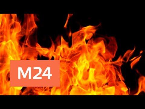 074d12ff4907 Торговый центр Фокус загорелся в Архангельске - Москва 24 - YouTube