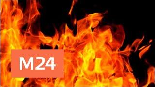 Торговый центр Фокус загорелся в Архангельске - Москва 24