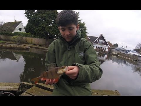 Perch And Pike Fishing At Wroxham