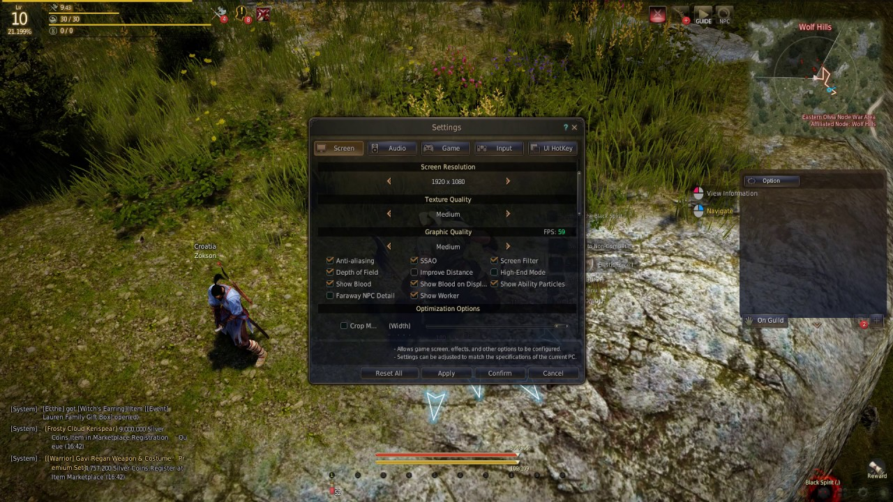 How to Disable Blood on Screen In Black Desert Online