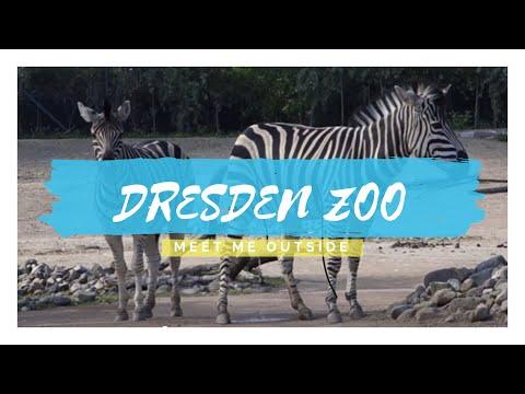 Dresden Zoo   Meet Me Outside