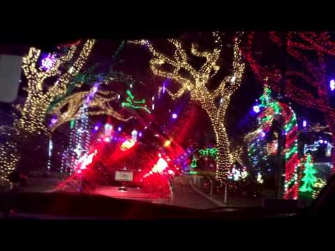 Palm Beach, FL - neighborhood Chrismas Lights Display