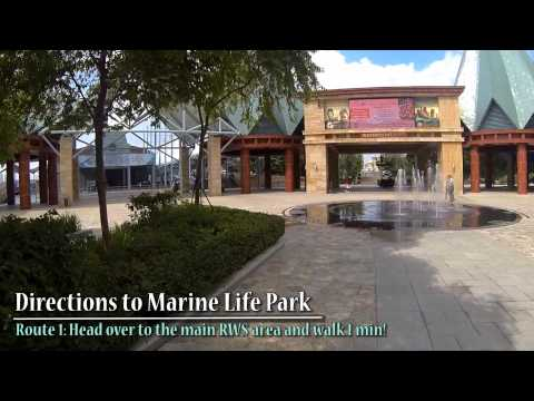 Marine life park mashpedia free video encyclopedia Directions to aquarium