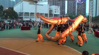Publication Date: 2020-05-11 | Video Title: 天水圍官立小學