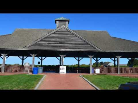 Long Island North Fork Wine Tours Vineyard Gallery
