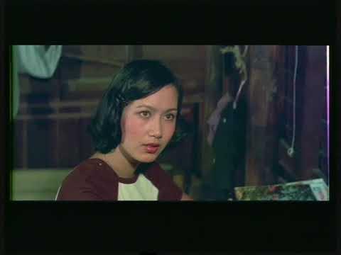 หนังไทยเก่า ถล่มดงนักเลง ตอน 1 กรุง สรพงษ์  หนังปี 2521 หนังเเนวบู๊ภูธร ภาพสวย นำแสดง