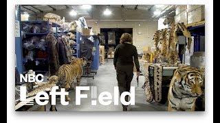 The Government's Black Market Animal Warehouse: NBC Left Field