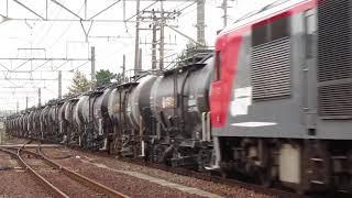 【JR貨物DF200形ディーゼル機関車】セメントシャトル牽引