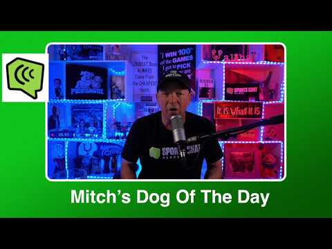 Mitch's Dog of the Day 2/22/21: Free College Basketball Pick CBB Picks, Predictions and Betting Tip