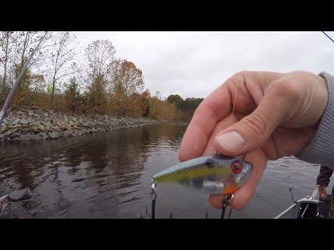 Lipless Crankbaits For Fall Bass At Sandy River Reservoir