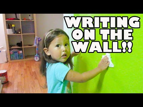 WRITING ON THE WALL!! (8.24.15 - DAY 616) DAILY VLOG