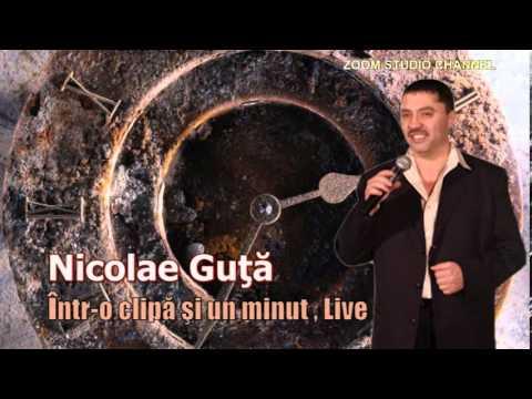 NICOLAE GUTA - INTR-O CLIPA SI UN MINUT, DOINA LIVE 2016