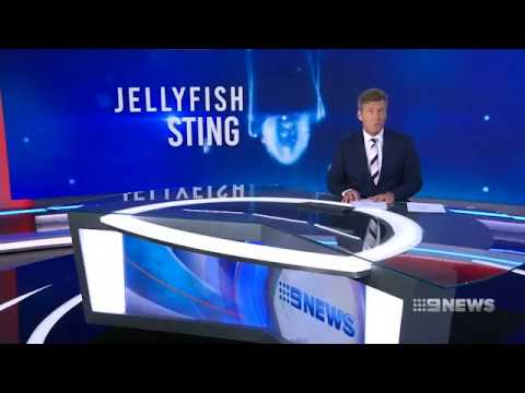 Teenager Stung By Irukandji Jellyfish | 9 News Perth | St John WA