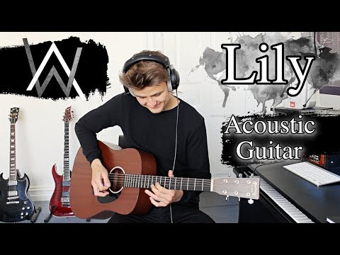 Lily - Acoustic Guitar Cover - Alan Walker