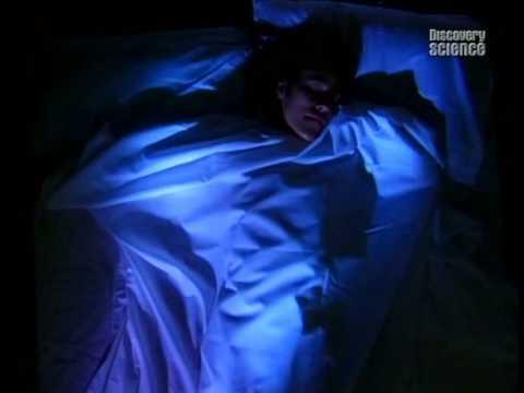Тайны сна 2006