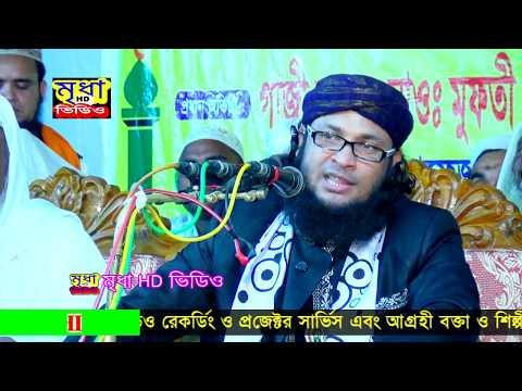 মুফতি মোহম্মদ মনিরুল ই