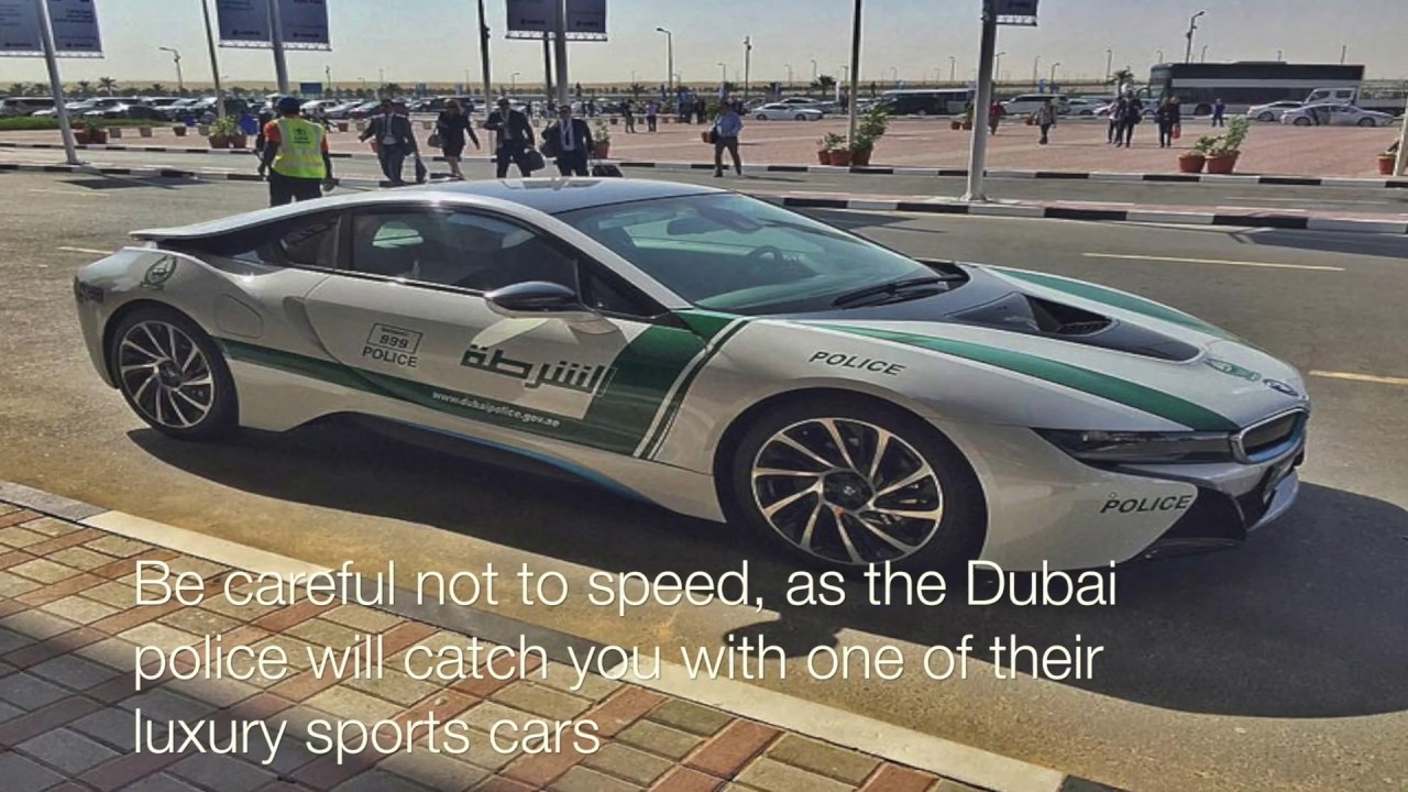 Download 10 Amazing things You'll only see in DUBAI