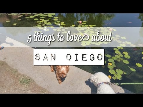 Top 5 Things I LOVE about being stationed San Diego: Navy Military Spouse Vlog
