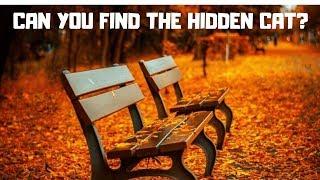 Tough Hidden Animals Picture Puzzles