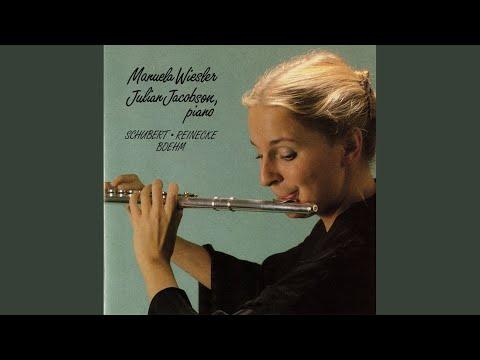 "Flute Sonata, Op. 167, ""Undine"": I. Allegro"