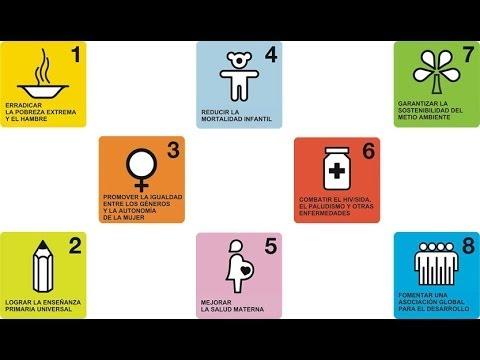 ODM 7  Garantizar la sostenibilidad del medio ambiente