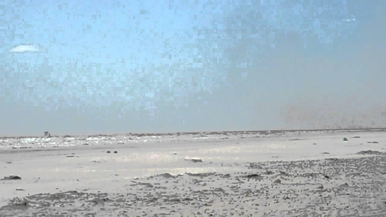 A Texas-Sized Makeover: McFaddin Beach - Texas General