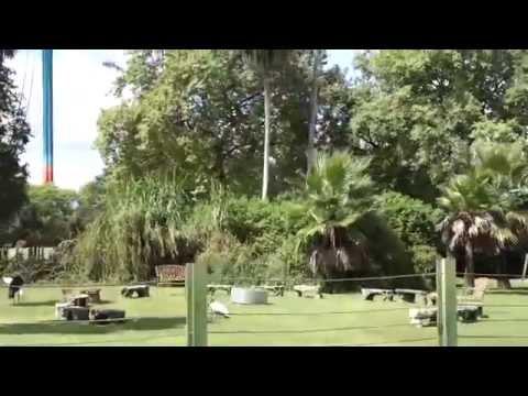 Serengeti Railway, Busch Gardens, Tampa