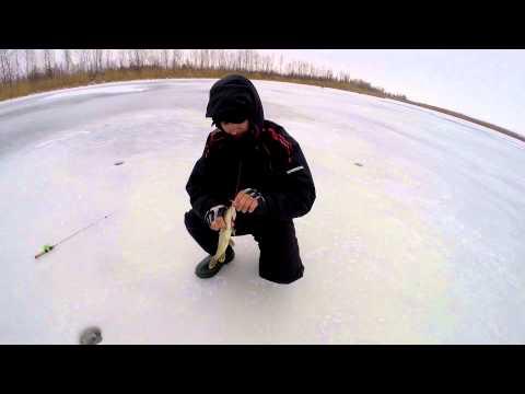прикормка для весенней рыбалки