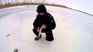 Ловля щуки на балансир со льда.