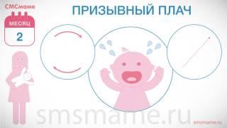 Ребенок 2 месяца - виды плача, почему плачет ребенок?