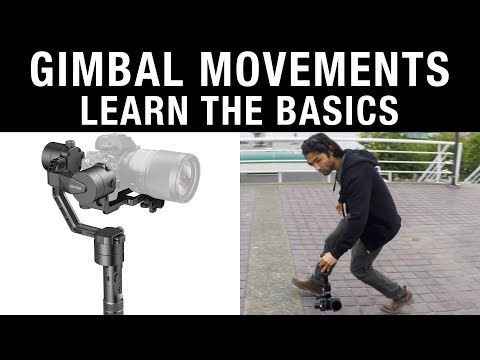 Gimbal Movements: Learn the Basics
