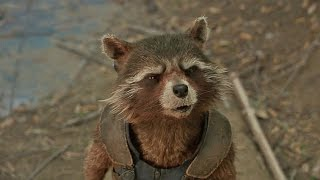 Rocket's Called a Trash Panda in Marvel's 'Guardians of the Galaxy Vol. 2' (2017)