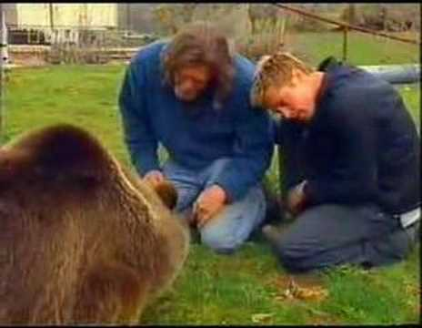 Brad pitt encounters and makes friends with a grizly bear